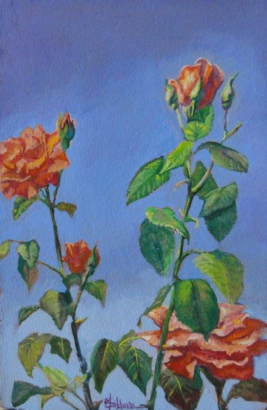Stephanie_Goldman-LaCanada-Roses-Watercolor-11x7