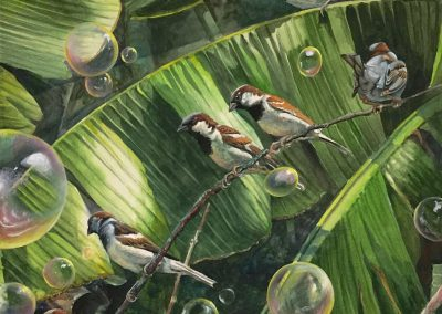 kengoldmanfineart-Bubble Birds-Watercolor-22x22 - Giclee Available
