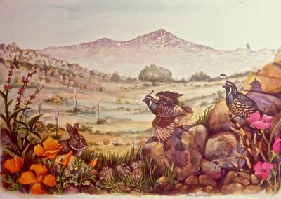 Goldmanfineart-Public Art Mural-Rancho La Puerta-Study for Quail Mural