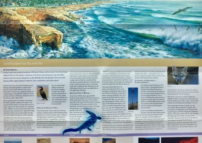 Goldmanfineart-Sunset Cliffs Natural Park Brochure2