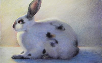 Virtual ZOOm Pet Drawing & Painting – Online | Ken Goldman-COMPLETE