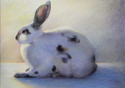 kengoldmanfineart-Calico Rabbit 3-Pastel-18x24 - SOLD