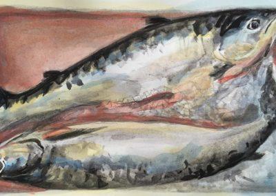 stephaniegoldmanfineartFish On Ice-Watercolor-5x10