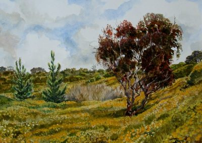 kengoldmanfineart-Sunset Cliffs Spring-Watercolor-11x14 - SOLD