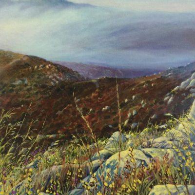 Ken_Goldman_Landscape_Giclee_Chaparral Fogrise - 31